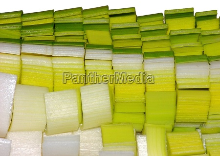 primer plano detalle verde caucasico vegetal