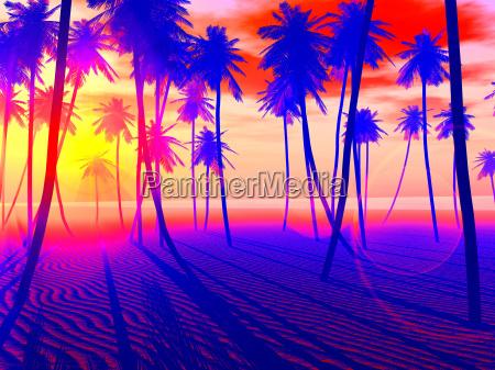 pop art playa